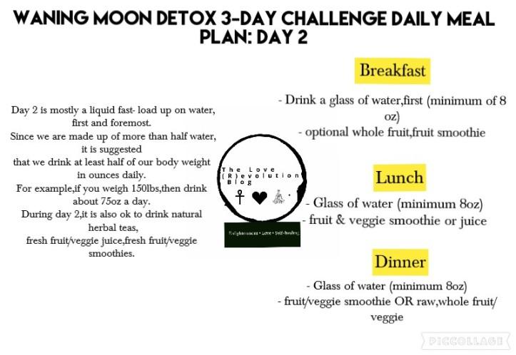 Day 2 detox Challenge